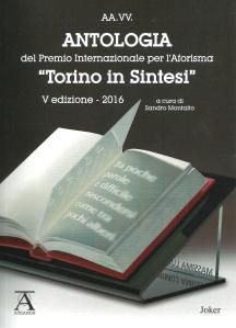 torino-in-sintesi-2016
